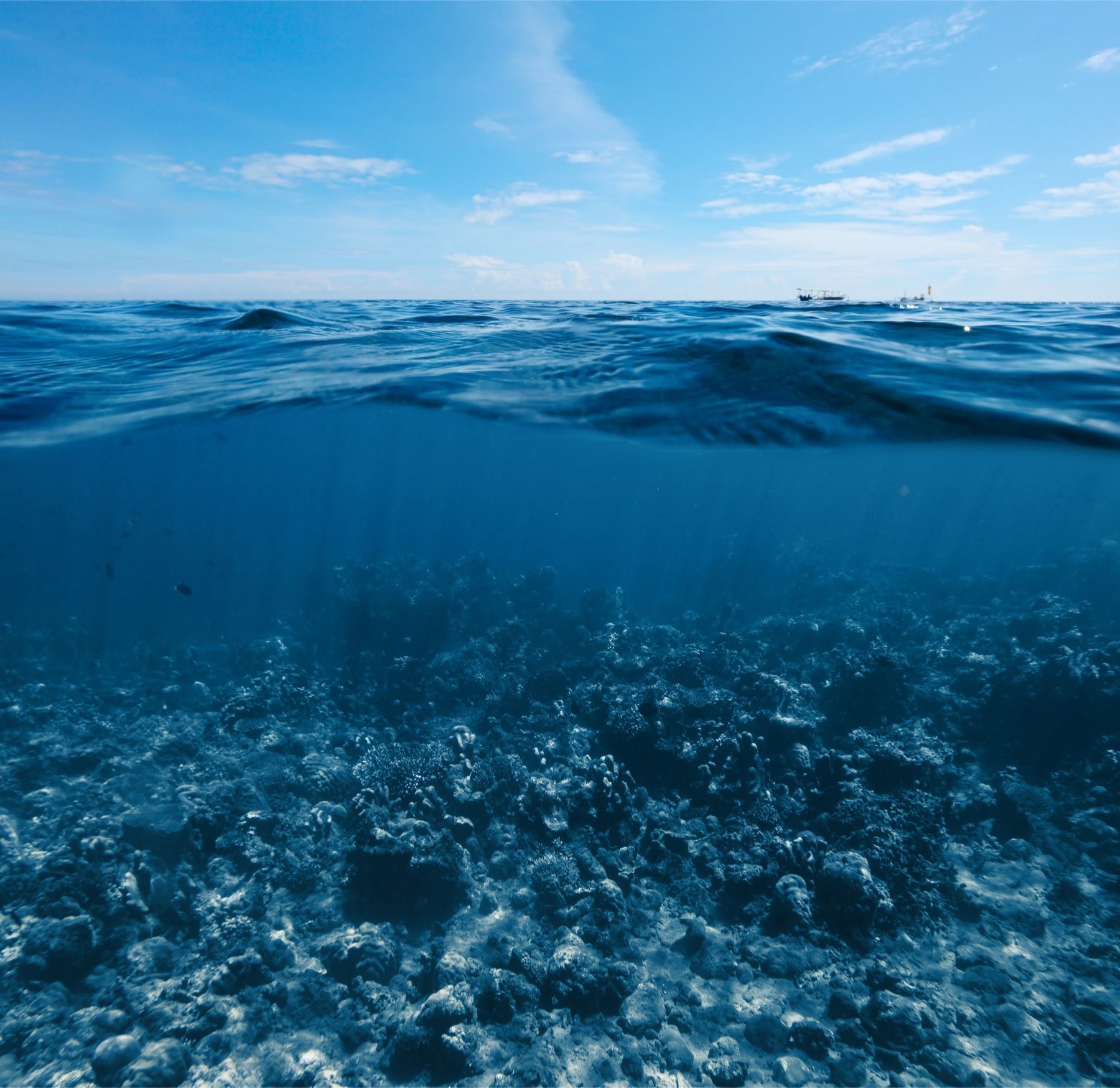 image of the sea